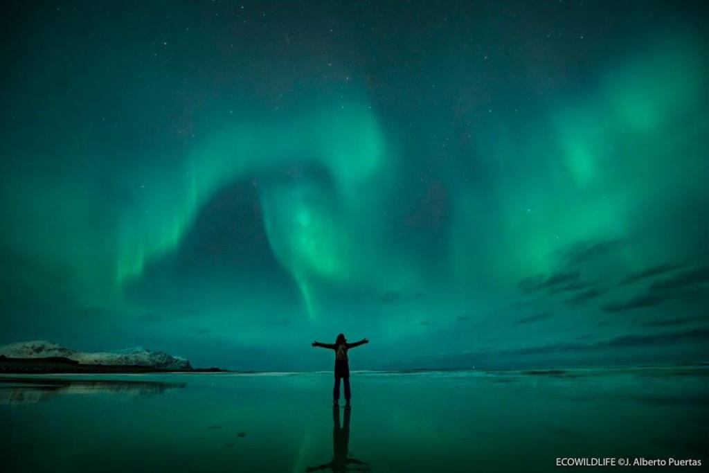 viajar a noruega con niños auroras boreales