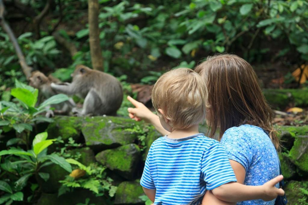 viajar a indonesia en familia