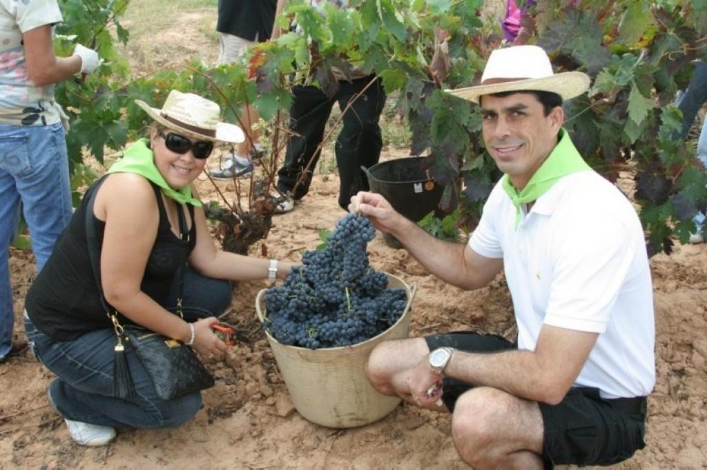 ruta del vino con niños