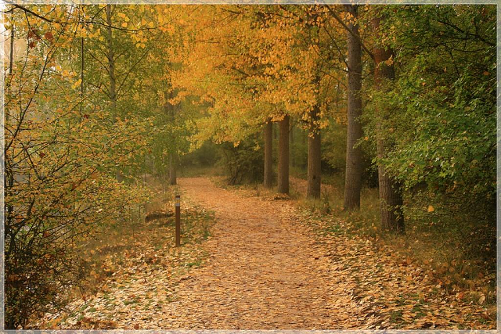 turismo rural en otoño con niños
